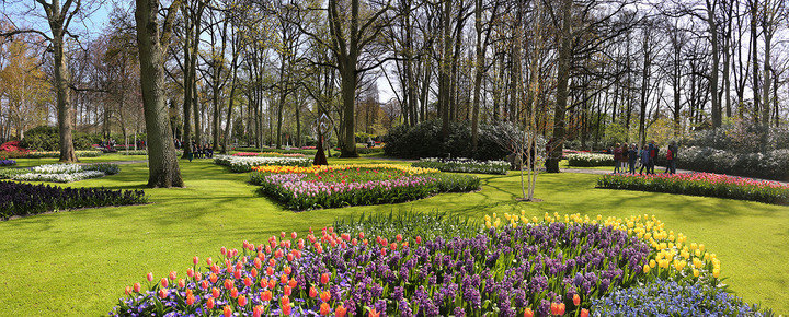 "De ""Keukenhof"" high resolution panoramas"